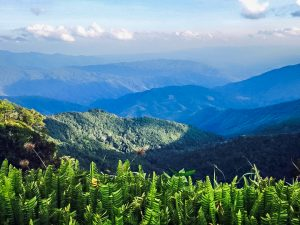 Doi Phu Kha National Park which spans across Luang Prabang Range and parts of northern Thailand