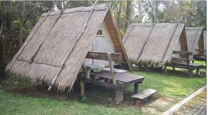 Doi Phu Kha National Park designated campsites
