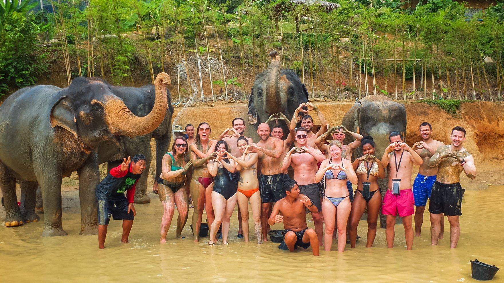 Elephant Sanctuary is one of the ethical elephant tourism in Phuket, Thailand
